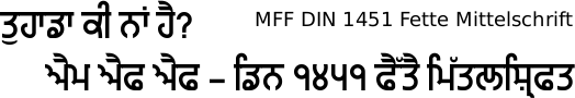 Miscellaneous Fun Fonts DIN 1451 Gurmukhi free download